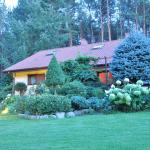 Willa Green Tree, Lubiewo