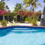 Фотографии отеля: Beach House Aruba Apartments, Пальм Бич