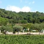 Residence Les Sellettes - Les Studios, Saint-Tropez