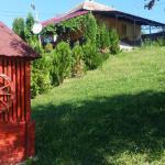 Zaki House, Ghimeş-Făget