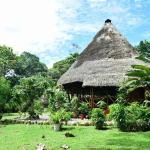 Hotel Pictures: Misahualli Wildlife Center, Puerto Misahuallí
