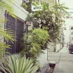 Hotel Pictures: Caribbean Palms Inn, Belize City