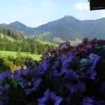 Foto Hotel: Reitlhof, Krispl