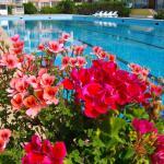 Hotelfoto's: Sunshine Pearl Hotel, Kavarna