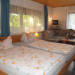 Hotel Pictures: Mattenhof, Zell am Harmersbach