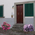Casa Delle Ortensie, Arcidosso