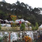Camp Nirvana Yamunotri,  Barkot