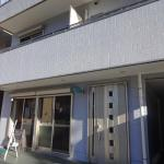 Ishi P', Ogasawara