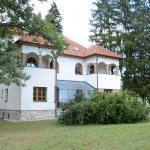 Hotel Vila Drina, Perućac