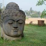 Rumah Dharma, Borobudur