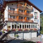 Hotel Park, Fiesch