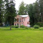 Cottages in Repino, Repino