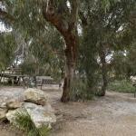 ホテル写真: Kangaroo Island Holiday Village, キングスコート