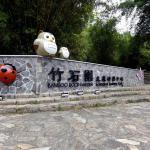 Sun Moon Lake Bamboo Rock Garden, Yuchi