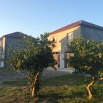 Leto land Guest House, Pizunda