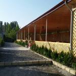 Zdjęcia hotelu: Shaki, Daşyüz