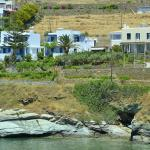 Villa Erotiki, Batsi