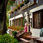 Hotel Pictures: Gasthof Adler, Tennenbronn