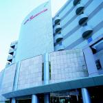 Hotel De Marronnier Utsumi Onsen,  Minamichita
