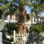 Hotel Apolafsi, Volos