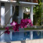 The Residence Bentota, Bentota