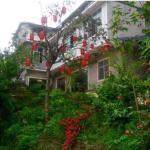 Hotel Pictures: Shunan Bamboo Sea Yuanlin Guesthouse, Jiangan