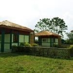 Jia Bhorali Wild Resort,  Charduār