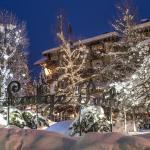 Hotel Pictures: Lodge Park, Megève