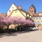 Hotel Pictures: Hôtel Du Herrenstein, Neuwiller-lès-Saverne