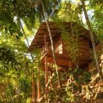 Polwaththa Eco Lodges, Karagastenna