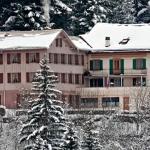 Hotel Pictures: BnB Hôtel des Bains, LEtivaz