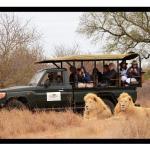Elandela Private Game Reserve and Luxury Lodge, Hoedspruit