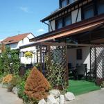 Hotel Pictures: Hotel & Landgasthof Ritter, Dauchingen