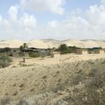 Negev Camel Ranch, Dimona