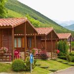 Hotel Pictures: Camping Valle de Tena, Sabiñánigo