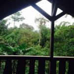 Hotel Pictures: Casa Divina Lodge, Mindo