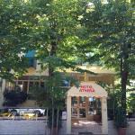 Hotel Athena, Pesaro