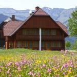 Hotellikuvia: Appartements Zettler, Donnersbachwald