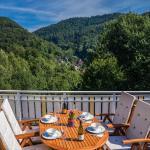 Hotel Pictures: Haus Solveig, Wieda