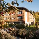 ホテル写真: Der Brückenwirt, Heinfels