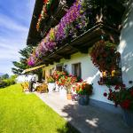 Photos de l'hôtel: Haus Schwab, Taxenbach