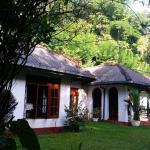 Springwater, Kandy