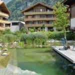 Hotel Pictures: Ferienwohnung Edelweiss Haus Niesen, Iseltwald