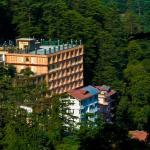 Hotel Landmark Shimla, Shimla