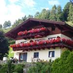 Photos de l'hôtel: Haus Salzachblick, Piesendorf