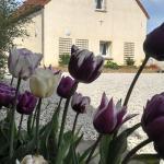 Hotel Pictures: Le Goût des Hôtes, Ablain-Saint-Nazaire