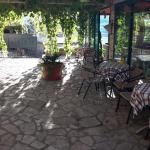 Tri Palme Guesthouse, Budva