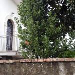 La Civetta, Supino