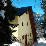 ホテル写真: Apartments Milinkovic, Jahorina