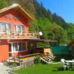 Villa Kokiche, Chiflik